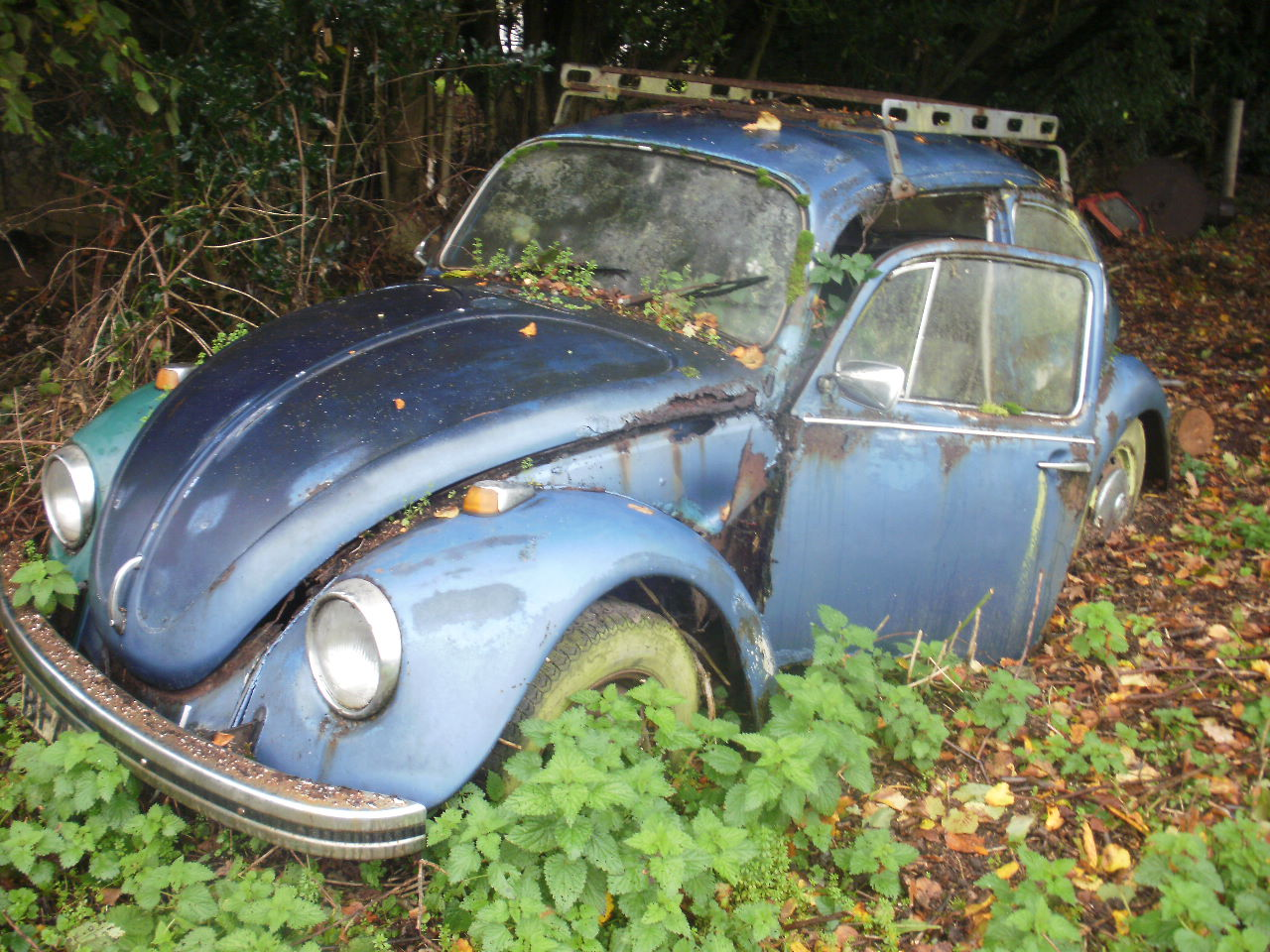 Breaking 1972 1300 beetle